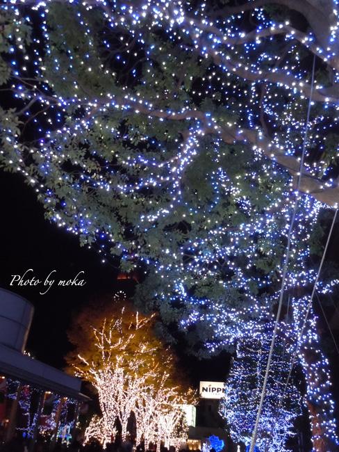 20101128_shinjuku04.jpg
