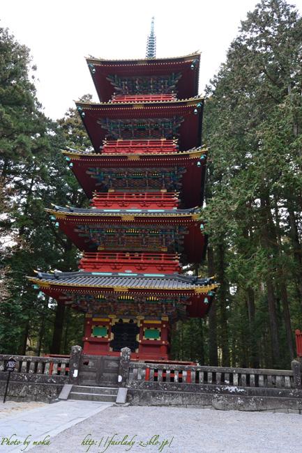 20110115_nikkou01.jpg