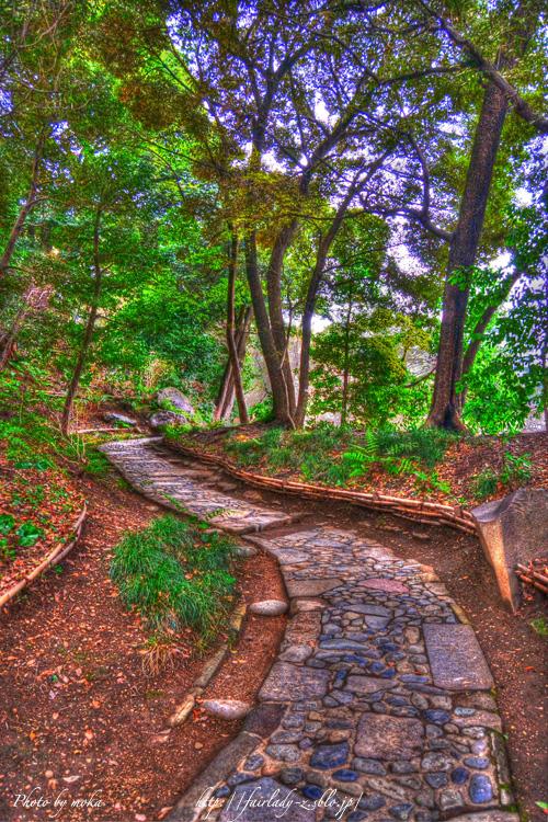 庭園の中の一本道